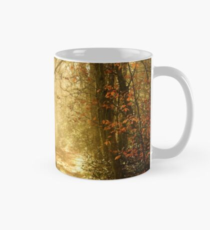 Light To My Path Mug