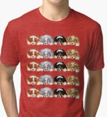 Australian Shepherd Puppies all 4 colors Tri-blend T-Shirt