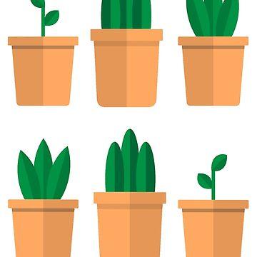 Pots by Richray