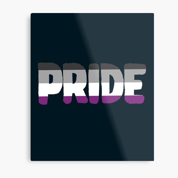 Pride Asexual Metal Print