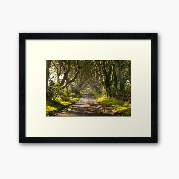 The Dark Hedges Framed Art Print