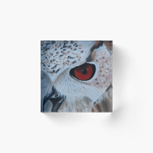 Red Eyed Owl Acrylic Block