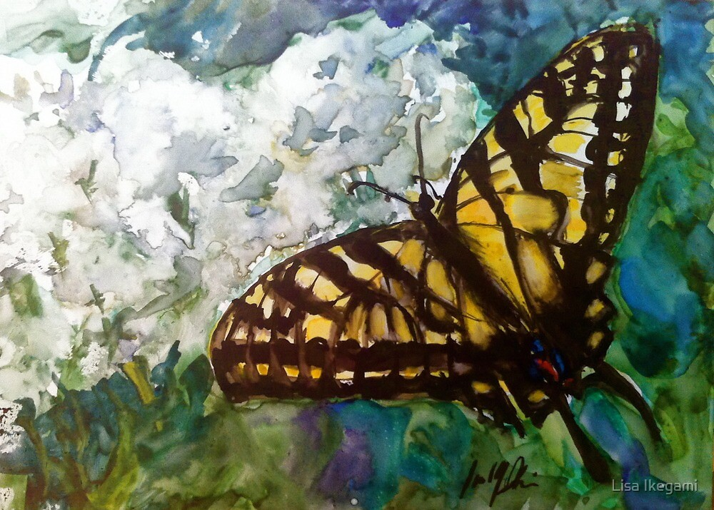 Swallowtail on Queen Anne's Lace by Lisa-Ikegami