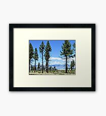 A Glimpse Of Mono Lake Framed Print