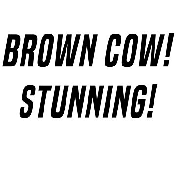 RuPaul's Drag Race- Brown Cow Stunning! by izzybaxter23