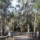 Bridge on Henley Road Kangaroo Ground Victoria 20180425 2565  by Fred Mitchell