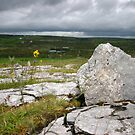 Clare Rocks by Martina Fagan