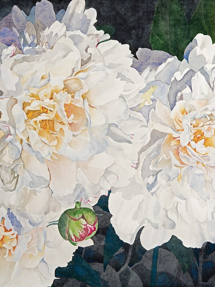 White Peonies Watercolor by witheroney