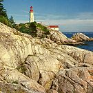 Lighthouse Park 2 by Terry Krysak