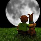 Moon Struck by Ann  Van Breemen