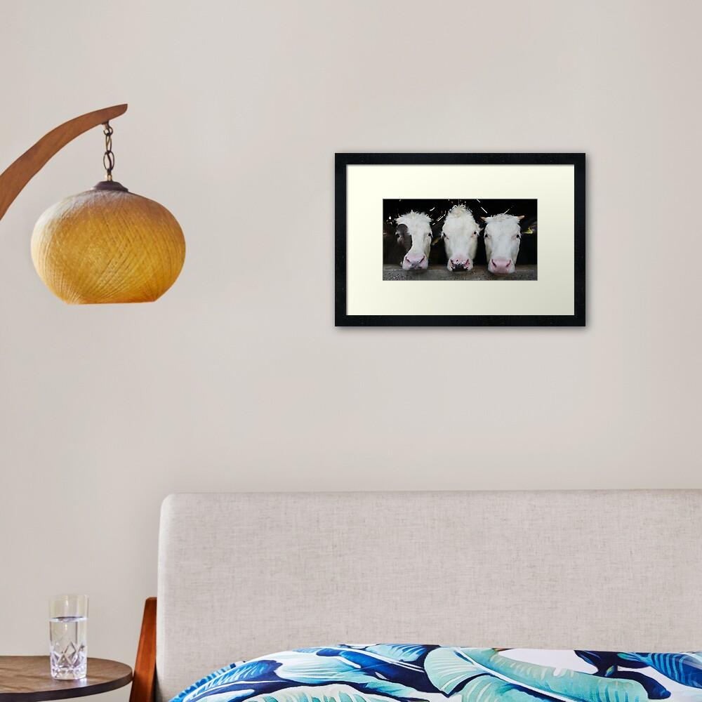 Three of a Kind Framed Art Print