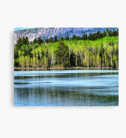 Yankee Lake 1 Canvas Print