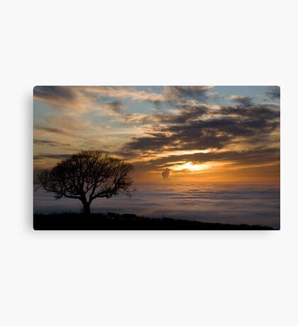Foggy View Canvas Print