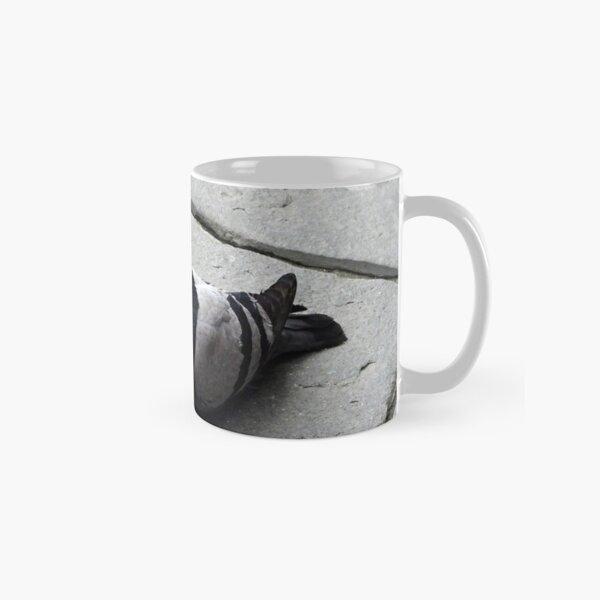 Majestic pigeon resting  Classic Mug