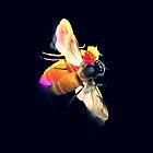 abeille noire by revedamour