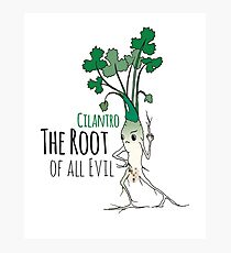 Cilantro - The Root of all Evil Photographic Print