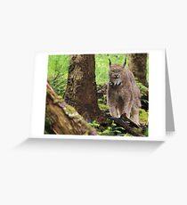 The Lynx Greeting Card