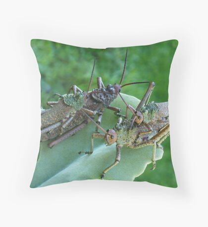 Love is in the air.... Throw Pillow