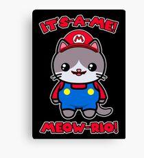 Cat Cute Kawaii Funny Mario Parody Canvas Print