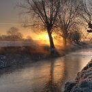 Frosty Sunrise by Martin Griffett