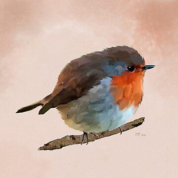 Bird: Round Robin - erithacus rubecula by bamalam-art
