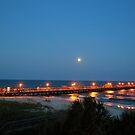 Full Moon At The Pier by Dawne Dunton