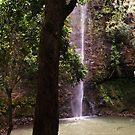 Secret Falls by abryant