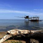 The trabocco of Punta Aderci by annalisa bianchetti