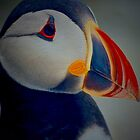 WHAT'S YOUR PUFFIN PROBLEM..? by NICK COBURN PHILLIPS