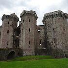 Raglan Castle, Raglan, Monmouthshire, Wales by trish725