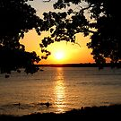 Summer Sunset by Crystal Hensley