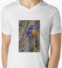 Azure kingfisher 06 Men's V-Neck T-Shirt