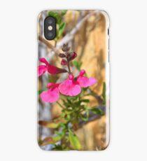 Autumn Sage iPhone Case/Skin