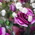 Flowers by Hannah Lowe