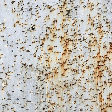 Staples, Old poster board, texture, pattern, image by TOMSREDBUBBLE