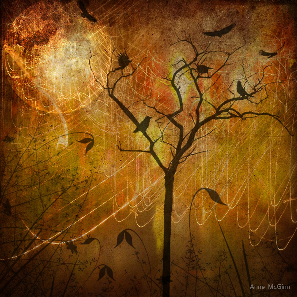 Moon Birds by Anne  McGinn