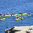 La Jolla, California ~ Great Day For Kayaking by Marie Sharp