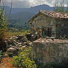 Lesvos, Greece landscape by milton ginos