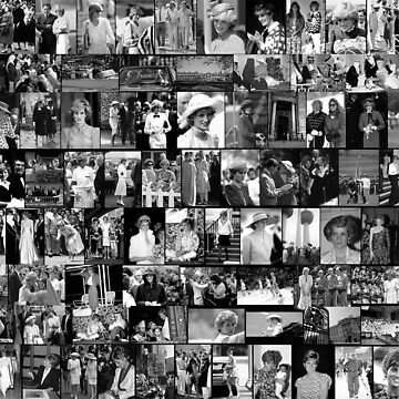 Stunning! HRH Princess Diana Photo Montage Collectors Edition No 2 BW by Picturestation