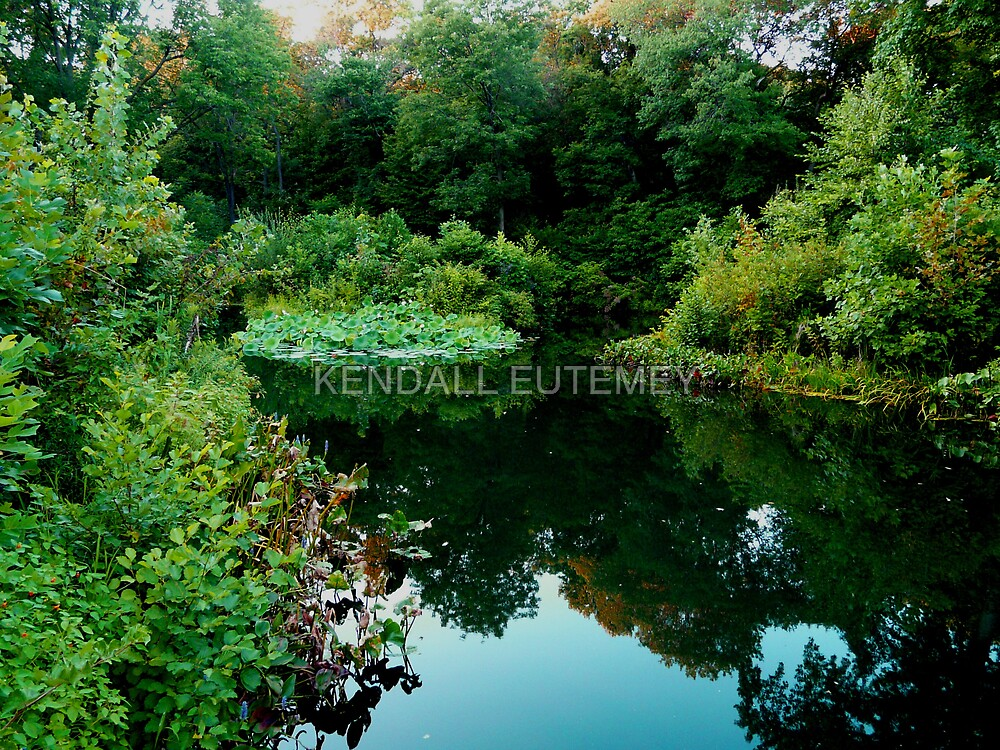 ENCHANTED GARDENS by KENDALL EUTEMEY