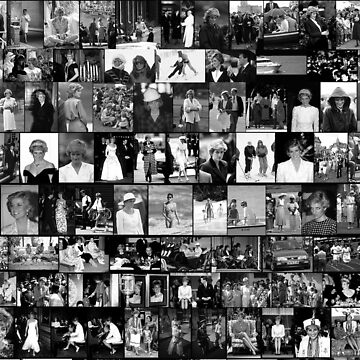 Stunning! HRH Princess Diana Photo Montage Collectors Edition No 3 BW by Picturestation