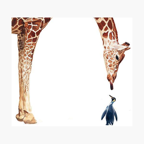 """Licker with Penguin"" Giraffe Watercolor Photographic Print"