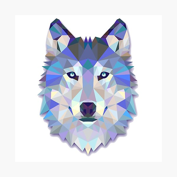 Cool Colorful Wolf Photographic Print
