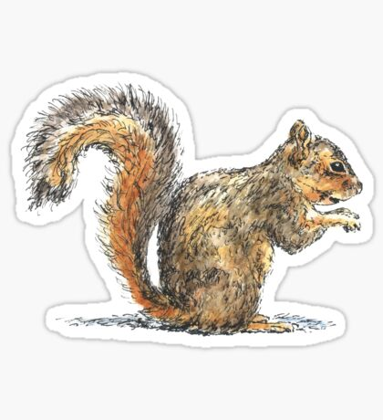 Sitting Squirrel Sticker