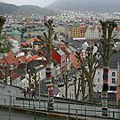 Yarn Storming in Bergen by RedHillDigital