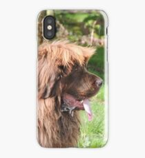 The Great Leonberger iPhone Case