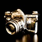 Candid Thoughts- A Modern Silver Gold Camera by Jacqueline Cooper