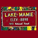 Lake Mamie (Red Theme) by Joe Lach