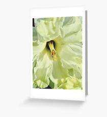 Georgia O'Daffodil 9814  Greeting Card
