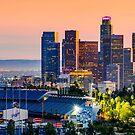 Downtown Los Angeles by Radek Hofman